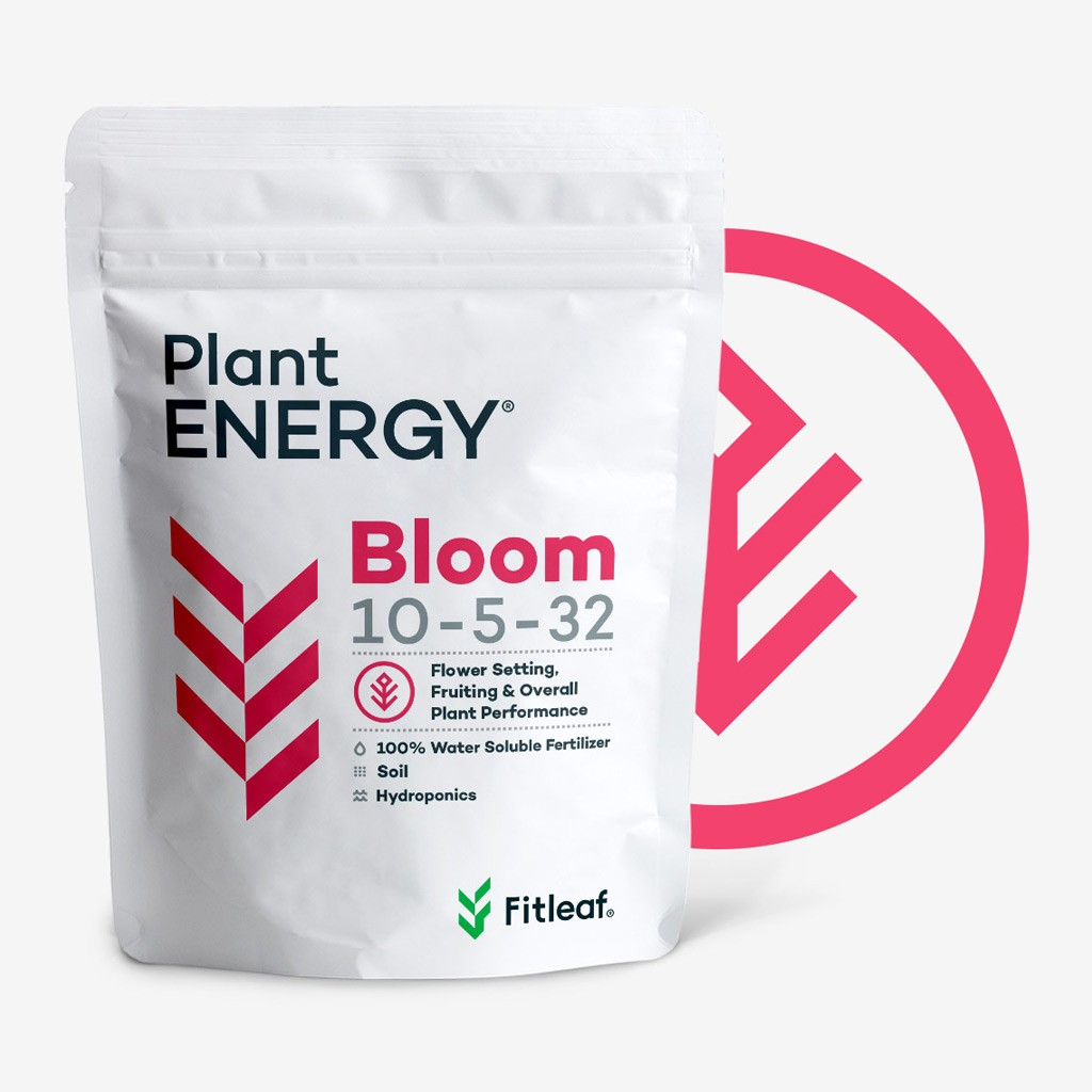 Product image for Plant ENERGY® Bloom Size-1 Kg (2.2 lb)