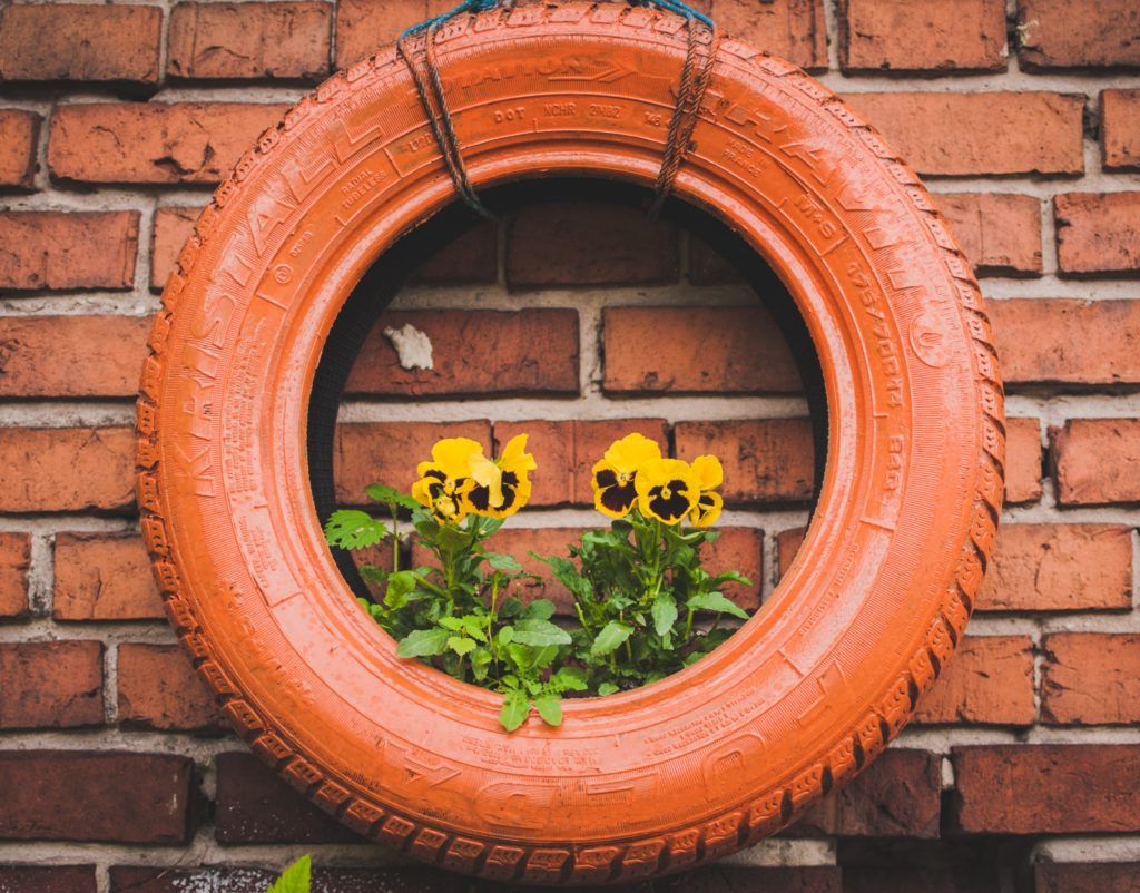 Remodeled tire being used as a hanging container for gardening